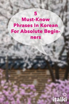 5 Must-Know Phrases In Korean For Absolute Beginners - Start with the basics to build a strong foundation. How To Speak Korean, Learn Korean, How To Say Hello, Learn Hangul, Korean Phrases, Korean Lessons, Korean Language Learning, Yoo Ah In, World Languages