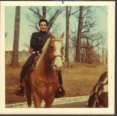 ELVIS PRESLEY VTG 1968 @GRACELAND MEMPHIS TN. HORSE BACK ...