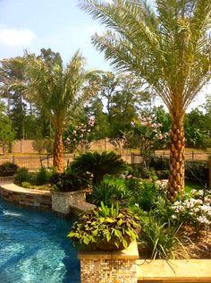 #Tropical #Backyard