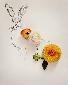 Rabbit No. 0031 by Kari Herer #art #photography