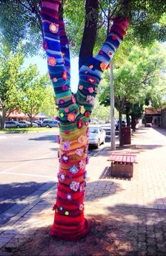 WORLD-WIDE TREND: Yarn bombing is becoming more and more popular. And there is nothing that cannot be yarn bombed. This tree can be found on Banna Avenue in Griffith.