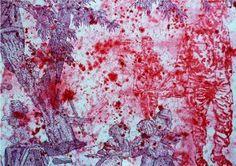Artiste Anne Cindric - Galerie d'Art Paris - Laure Roynette