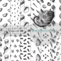 Seashells Digital Paper Vol.2 Seashells Clipart Seamless