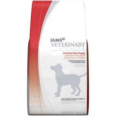 Iams Intestinal Puppy Dog Food, 8 lb * Awesome dog product. Click the image : Dog food brands