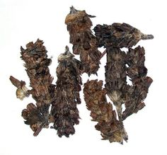 dried Xia Ku Cao Prunella Spike dried chinese herb 16 oz454 g ** Read more  at the image link.