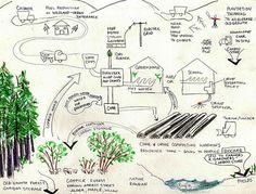 biochar economy sketch