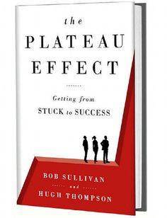 Why You Shouldn't Be a Perfectionist at Work: The co-author of 'The Plateau Effect' says this time-consuming quirk can shut down progress and backfire on you