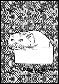 Cute cat in a box coloring page for all ages digital