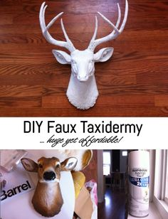 DIY Faux Taxidermy. Huge yet affordable piece of decor for your walls!
