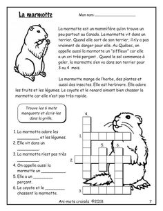 French Teaching Resources, Teaching French, Teaching Tools, Core French, French Class, French Worksheets, French Immersion, Reading Lessons, Home Schooling