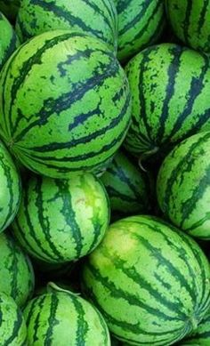 Beautiful Green Watermelons