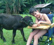 Niña con parálisis cerebral encontró en un búfalo de 300 kilos a su compañero de juegos