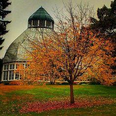 Wrights Park. Tacoma,Washington