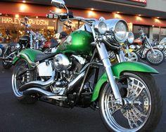 Harley........, In my favorite color