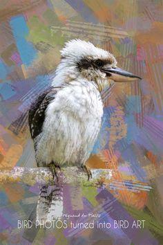 Bird Art / Butterfly Art - printed on STRETCHED CANVAS & embellished with clear matt texture to enhance the original digital brush strokes. DIGITAL BIRD ART Abstract Photos, Abstract Canvas, Wall Art Prints, Fine Art Prints, Photo To Art, Art Prints Online, Bird Artwork, Art Birthday, Butterfly Art