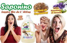 Panique dans les hypermarchés lors du lancement de la lessive bio 100% naturelle la moins chère du marché, SAPONINO!!