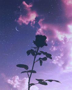 Cute Galaxy Wallpaper, Night Sky Wallpaper, Purple Wallpaper Iphone, Scenery Wallpaper, Cute Wallpaper Backgrounds, Pretty Wallpapers, Wallpaper Desktop, Wallpaper Quotes, Dark Purple Aesthetic