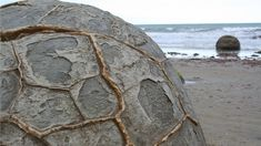These unusually large and spherical boulders lie along a stretch of Koekohe Beach on the coast of New Zealand. Their origin has been the subject of numerous Maori legends but scientifically speaking they are the result of coastal erosion.