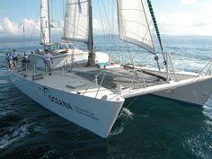 Oceana #Nautica