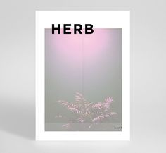 HERB magazine on Behance