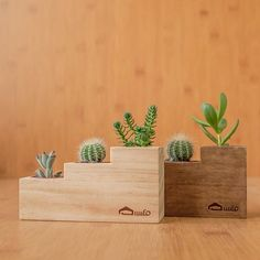 [Fleshy ladder tub] Manual fleshy wood flower / without planting / non-plastic storage basin - Shop mifo wood industrial arts - Plants - Pinkoi Diy Flowers, Flower Pots, Cactus Flower, Succulent Pots, Succulents, Flower Pot Design, Small Wood Projects, Wood Vase, Wooden Planters