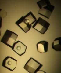 Tetragonal Lysozyme crystals