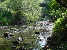 johnson creek wi | Johnson Creek,WISCONSIN Real Estate Market Report July-Aug 2013
