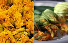 Five Ways to Eat Squash Blossoms...one of favorites is fried squash blossoms stuffed with mozzarella and a Chipotle dipping sauce! Yum!