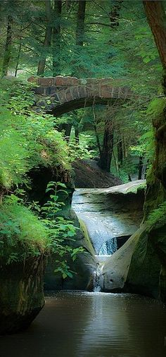 Old Man's Cave Gorge near Logan, Ohio travel USA beautiful places to visit Places Around The World, Oh The Places You'll Go, Places To Travel, Around The Worlds, Travel Destinations, Les Cascades, All Nature, Nature Pics, Green Nature