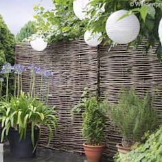 modern Garden by naturgeflechte24
