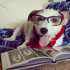 shhhh! i'm reading!