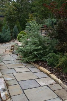 Cut flagstone walkway with a low border of natural stone blocks. This walkway leads through a garden filled with evergreen and pine. Picture compliments of www.nichegardenslandscaping.com