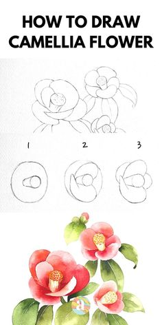 Easy Flower Drawings, Beautiful Flower Drawings, Flower Art Drawing, Flower Drawing Tutorials, Flower Sketches, Floral Drawing, Easy Sketches, Step By Step Sketches, Watercolor Painting Techniques