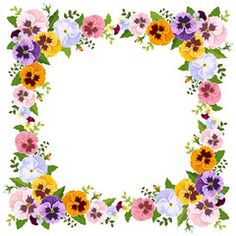 Frame with colorful pansy flowers. Vector illustration.                                                                                                                                                                                 Más