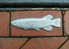 Resultado de imagen de stormwater fish