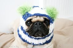 Snuggly Pug Hat http://europug.eu/product/original-snuggly-hat/