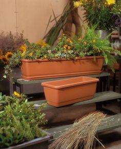 Jardinera Kalis (plástico inyección) - Kalis plant box (polypropylene)  Medidas - Size cm.50 (cm.456 x 206 x 35 h.) cm.60 (cm.556 x 206 x 35 h.) cm.80 (cm.756 x 206 x 35 h.) cm.100 (cm.956 x 206 x 35 h.) #decoracion #decoração#casayjardin#casa #homeandgarden#home#decor#deco #decoration#instadecor#jardin#florist #floristeria#pottery#pot#macetas #housedecor#florista#plantas#plants #plant#floreria#plantbox #jardinera#jardineria #homedesign #myhome #gardencenter #garden #vivero…