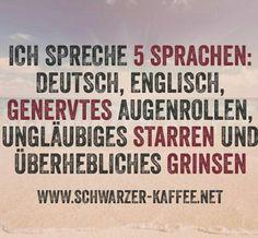 Ich spreche 5 Sprachen
