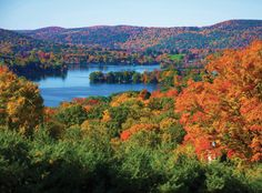 @InStyle named Connecticut's Litchfield Hills best-dressed for fall! #FindFallFaster