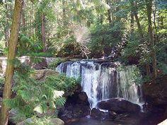 Whatcom Falls Park, Bellingham, Washington.