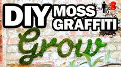 The Truth about this Graffiti MOSS Pin...Finally!