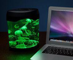 Desktop Jellyfish Aquarium