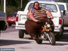 Images insolites et drôles Transport - Moto v7 - Des milliers de photos drôles et insolites