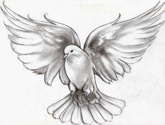 Flying-Dove-Tattoo-Design.jpg (736×560)