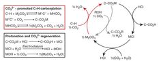 Molten salts containing alkali metal cations can be used to generate species that easily react with carbon dioxide to produce organic compounds. The approach could enable the synthesis of useful chemicals for plastic production from carbon dioxide without any highly reactive reagents.