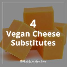 4 vegan cheese substitutes