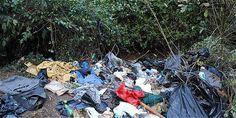 Averigüe cuánto dinero pagaría por ser infractor ambiental en Bogotá « Notas Contador