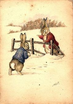 Image result for rabbit illustrations vintage
