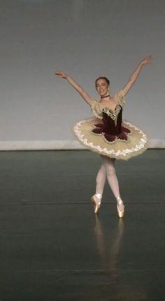 Ballet Tutu, Ballet Dancers, Ballerinas, Ballet Skirt, Skirts, Instagram, Dresses, Fashion, Ballet