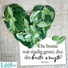 Goeie More, Afrikaans Quotes, Note To Self, Positive Thoughts, Woman Quotes, Hart, Qoutes, Inspirational Quotes, Words